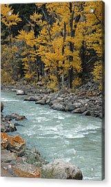 Autumn In Montana's Gallatin Canyon Acrylic Print