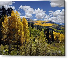 Autumn In New Mexico Acrylic Print