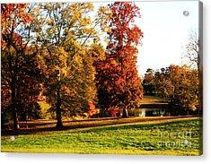 Autumn In The Air... Acrylic Print by Jinx Farmer