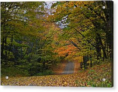 Autumn In The Caledon Hills Acrylic Print