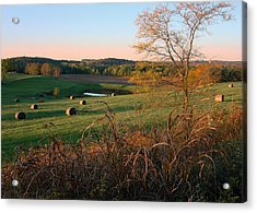 Autumn In The Country Acrylic Print by Ellen Tully
