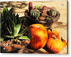 Autumn In The Desert Acrylic Print by Marilyn Smith