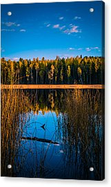 Acrylic Print featuring the photograph Autumn In The Kootenays by Rob Tullis