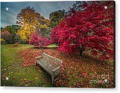 Autumn In The Park Acrylic Print by Adrian Evans