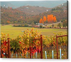 Acrylic Print featuring the photograph Autumn In The Valley by Brooks Garten Hauschild