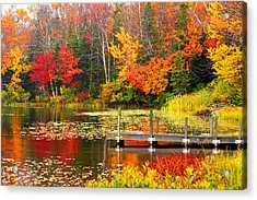 Autumn In Vt Acrylic Print