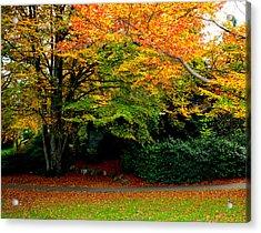 Autumn Acrylic Print by Izabela Bienko