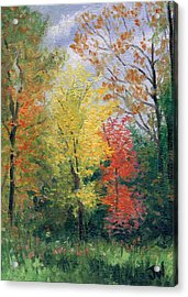 Acrylic Print featuring the painting Autumn by Joe Winkler
