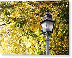 Autumn Lamp Post Acrylic Print