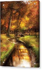 Autumn - Landscape - By A Little Bridge  Acrylic Print by Mike Savad