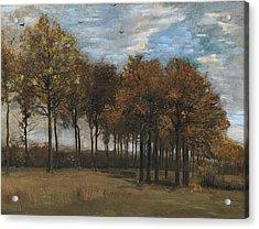 Autumn Landscape, C.1885 Acrylic Print by Vincent van Gogh
