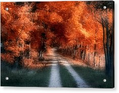 Autumn Lane Acrylic Print by Tom Mc Nemar