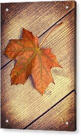 Autumn Leaf Acrylic Print by Amanda Elwell