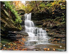 Autumn Leaves Below The Nameless Hidden Waterfall Acrylic Print