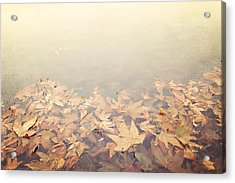 Autumn Leaves Floating In The Fog Acrylic Print by Angela A Stanton