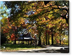 Autumn Leaves In Prospect Park Acrylic Print