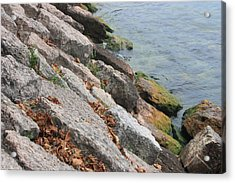 Acrylic Print featuring the photograph Autumn Leaves Lake Garda Italy by Jean Walker