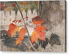 Autumn Leaves On Belmont St Acrylic Print
