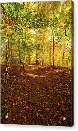 Autumn Leaves Pathway  Acrylic Print