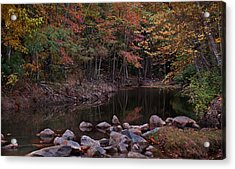 Autumn Leaves Reflecting In The Stream Acrylic Print