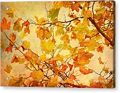 Autumn Leaves With Texture Effect Acrylic Print by Natalie Kinnear