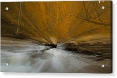 Autumn Light On Little River Acrylic Print