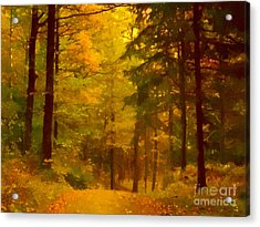 Autumn Lights Acrylic Print by Lutz Baar