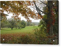 Autumn Meadow Acrylic Print