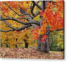 Acrylic Print featuring the photograph Autumn Memories by Alan L Graham