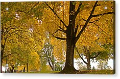 Autumn Memories Acrylic Print by Beverly Guilliams