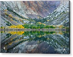 Autumn Mirror Acrylic Print