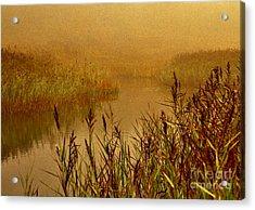 Autumn Mist Acrylic Print