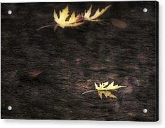 Autumn Mood - Fall - Leaves Acrylic Print