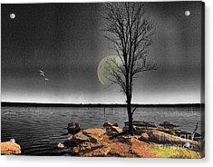 Autumn Moon Acrylic Print by Betty LaRue
