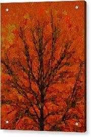 Autumn Muse Mosaic Melody Acrylic Print