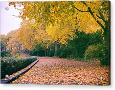 Autumn - New York City - Fort Tryon Park Acrylic Print by Vivienne Gucwa