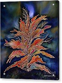 Autumn Nights Acrylic Print by Ursula Schroter