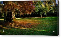 Acrylic Print featuring the photograph Autumn by Nina Ficur Feenan