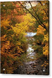 Acrylic Print featuring the photograph Autumn On Display by Jessica Jenney