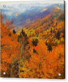 Autumn On Fire In The Mountains Acrylic Print by Dan Sproul