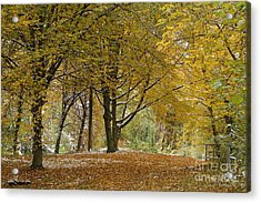 Acrylic Print featuring the photograph autumn on Moenchsberg in Salzburg by Rudi Prott