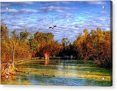Autumn On The Boardwalk Acrylic Print by Larry Trupp