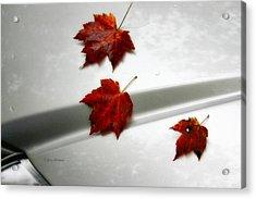 Autumn On The Car Acrylic Print