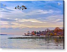 Autumn On The Chesapeake Bay Acrylic Print