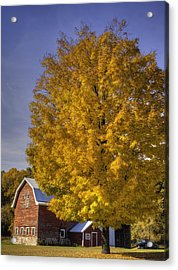 Autumn On The Farm Acrylic Print by Thomas Young