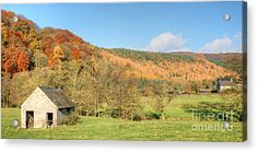 Autumn On The Hillside Acrylic Print by David Birchall