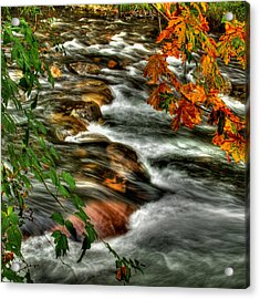 Autumn On The River Acrylic Print by Randy Hall