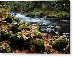 Autumn On The Salmon River, Welches Acrylic Print