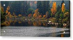 Autumn On The Umpqua Acrylic Print by Suzy Piatt