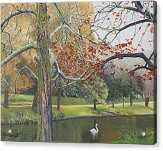 Autumn On Town Pond Acrylic Print